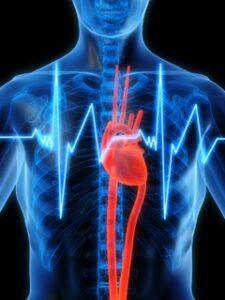 Heart & Energy