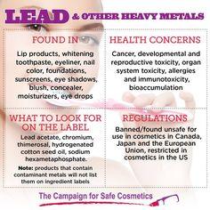 CFSC- Lead